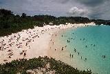 バミューダのホースシュー海岸