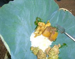 ハスの葉に載せたスリランカのランチ