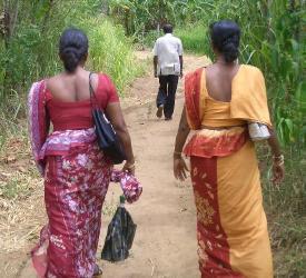 サリーを着たスリランカ女性の後ろ姿